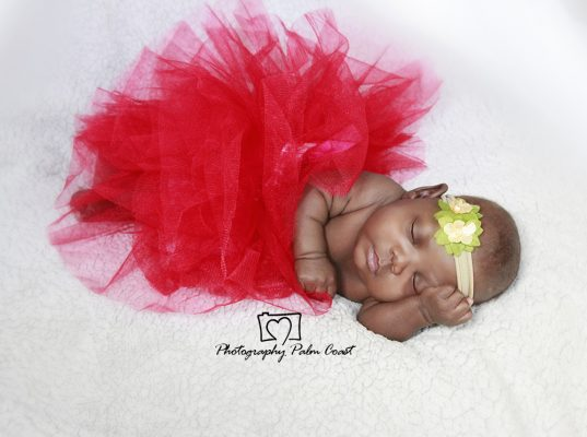 Newborn Photographer Jacksonville